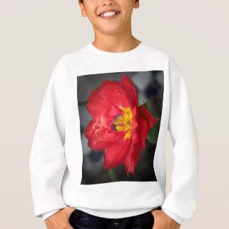 The Parrot Sweatshirt