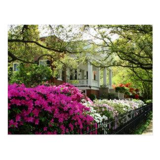 The Parsonage - Spring in Natchez, Mississippi Postcard