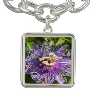 The Passion Flower