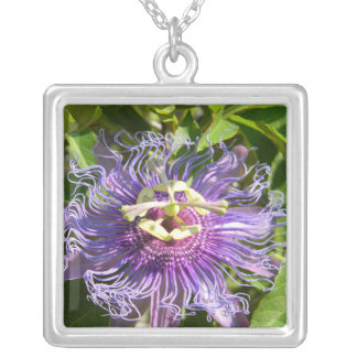 The Passion Flower Silver Plated Necklace
