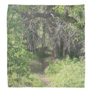 The Path Bandana