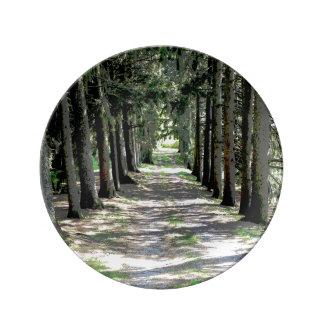 The path -decorative plate porcelain plates