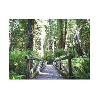 The Path Less Taken -- Canvas