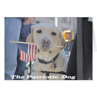 The Patriotic Dog Card