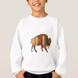 THE PATTERNS SHOWN SWEATSHIRT
