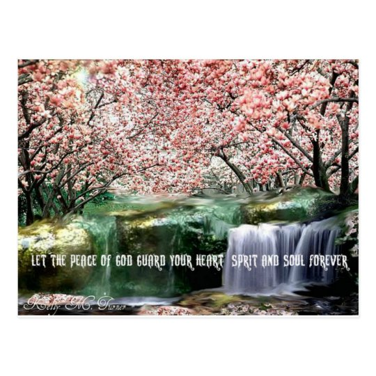 The Peace Cherry Blossom Postcard
