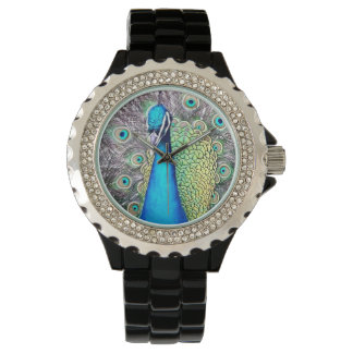 The peacock watch
