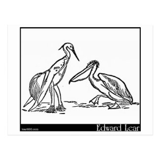 The Pelican Chorus Postcard