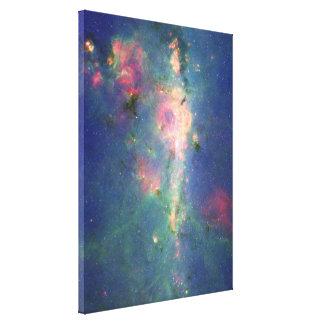 The Peony Nebula Canvas Print