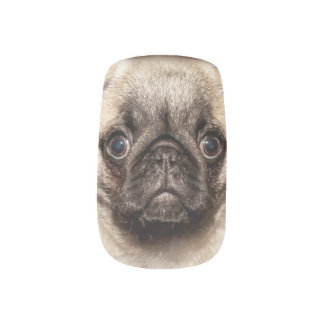 The perfect child  is a pug fingernail transfers