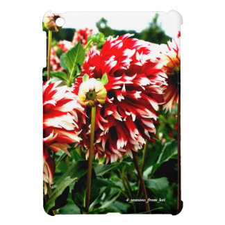 The photograph of the color vivid dahlia which was case for the iPad mini