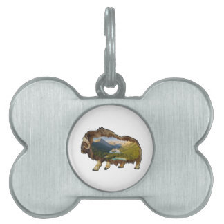 The Picture Within Pet Tag