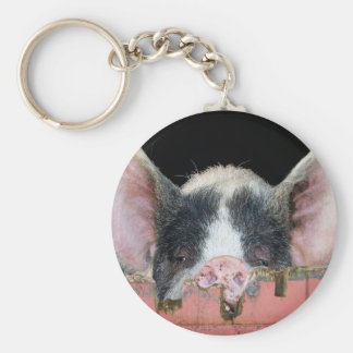 The Pig Keychain