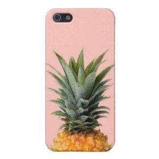 The pineapple (Ananas comosus) case
