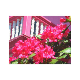 The Pink Cottage on Martha's Vineyard Balcony Canvas Print