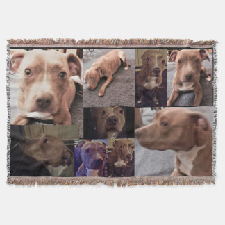 THE PIT BULL WITH LOVE throw