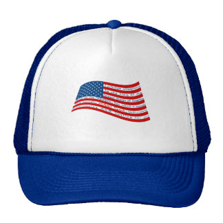 The Pledge of Allegiance Hats