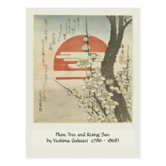 The Plum Tree and The Rising Sun Postcard