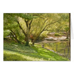 The Pond - Central Park NYC Greeting Card