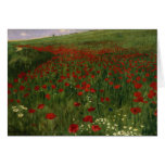 The Poppy Field, 1896 Cards