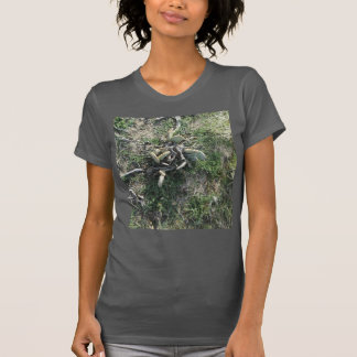 The Prickly Pear Cactus Shirt