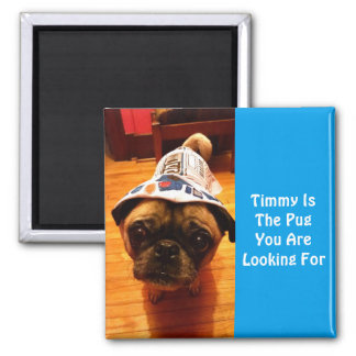 The Pug You Are Looking For Square Magnet