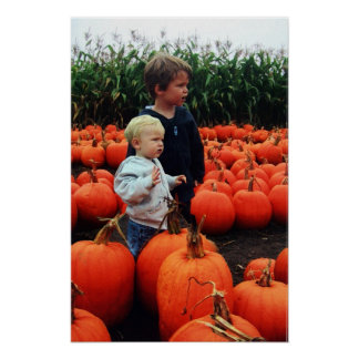 The Pumpkin Patch Poster
