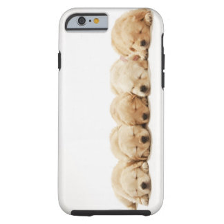 The puppies of the golden retriever tough iPhone 6 case