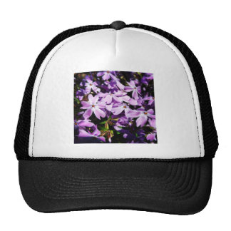 The Purple Flower Patch Cap