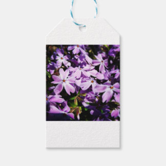 The Purple Flower Patch Gift Tags