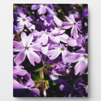The Purple Flower Patch Plaque
