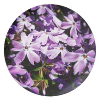 The Purple Flower Patch Plates