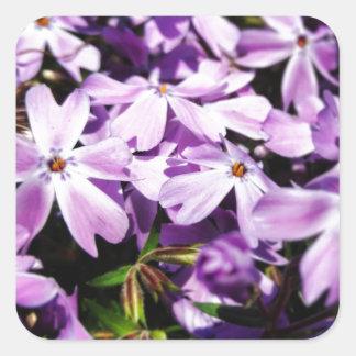 The Purple Flower Patch Square Sticker
