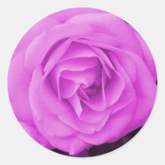 The purple rose experience round sticker