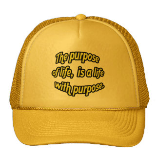 The purpose of life, is a life with purpose. hat
