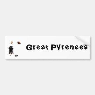 The Pyrenees Stare Bumper Sticker 2
