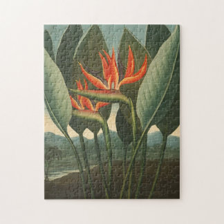 'The Queen (Bird of Paradise)' Jigsaw Puzzle