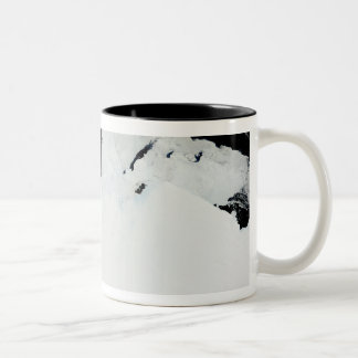 The Queen Mary Coast of Antarctica Coffee Mugs