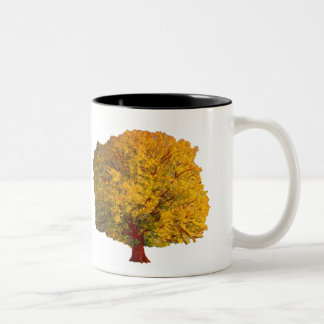 The Quest Tree Mug