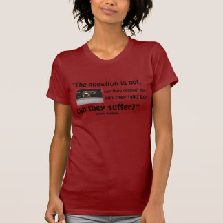 The question ice's note, can they reason? … T-Shirt