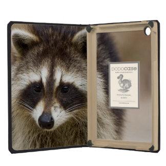 The raccoon, Procyon lotor, is a widespread, iPad Mini Retina Case