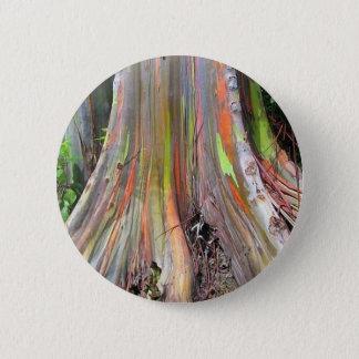 The Rainbow Eucalyptus Tree Products 6 Cm Round Badge