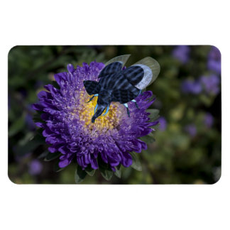 The Rare Blue Bugphant Rectangular Photo Magnet