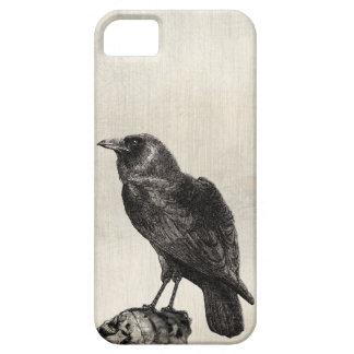 The Raven Gothic Horror Style Case for Halloween