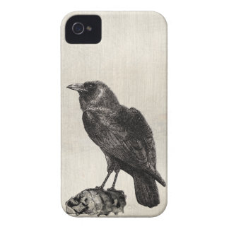 The Raven Gothic Horror Style Case for Halloween iPhone 4 Cases