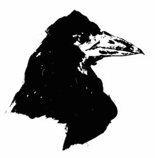 The Raven of Edgar Allan Poe Photo Sculpture Decoration