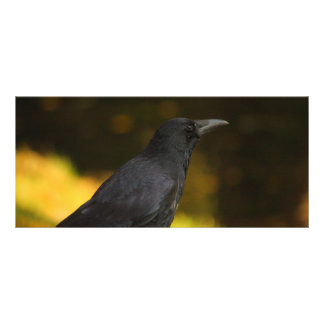 the raven custom rack card