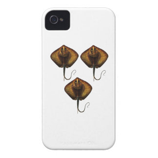 THE RAYS WAVES iPhone 4 CASE