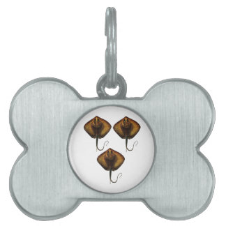 THE RAYS WAVES PET ID TAG