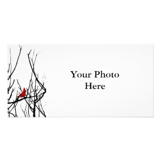 The Red Bird by Leslie Peppers Customized Photo Card